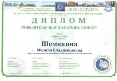 шемякина диплом